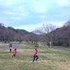 池子の森自然公園が土日休日にオープン