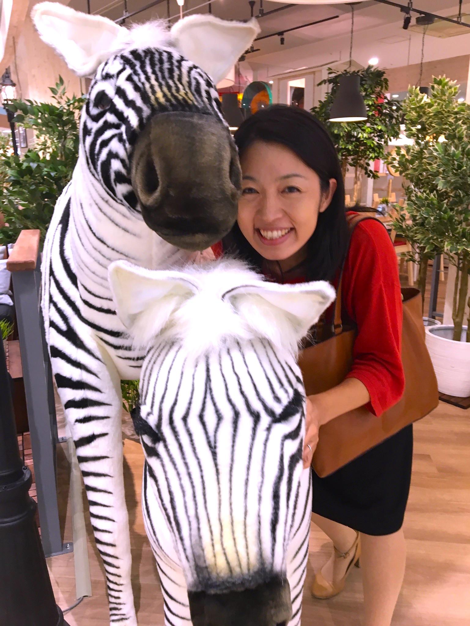 こまちぷらす森さんと東戸塚のイオンで遭遇