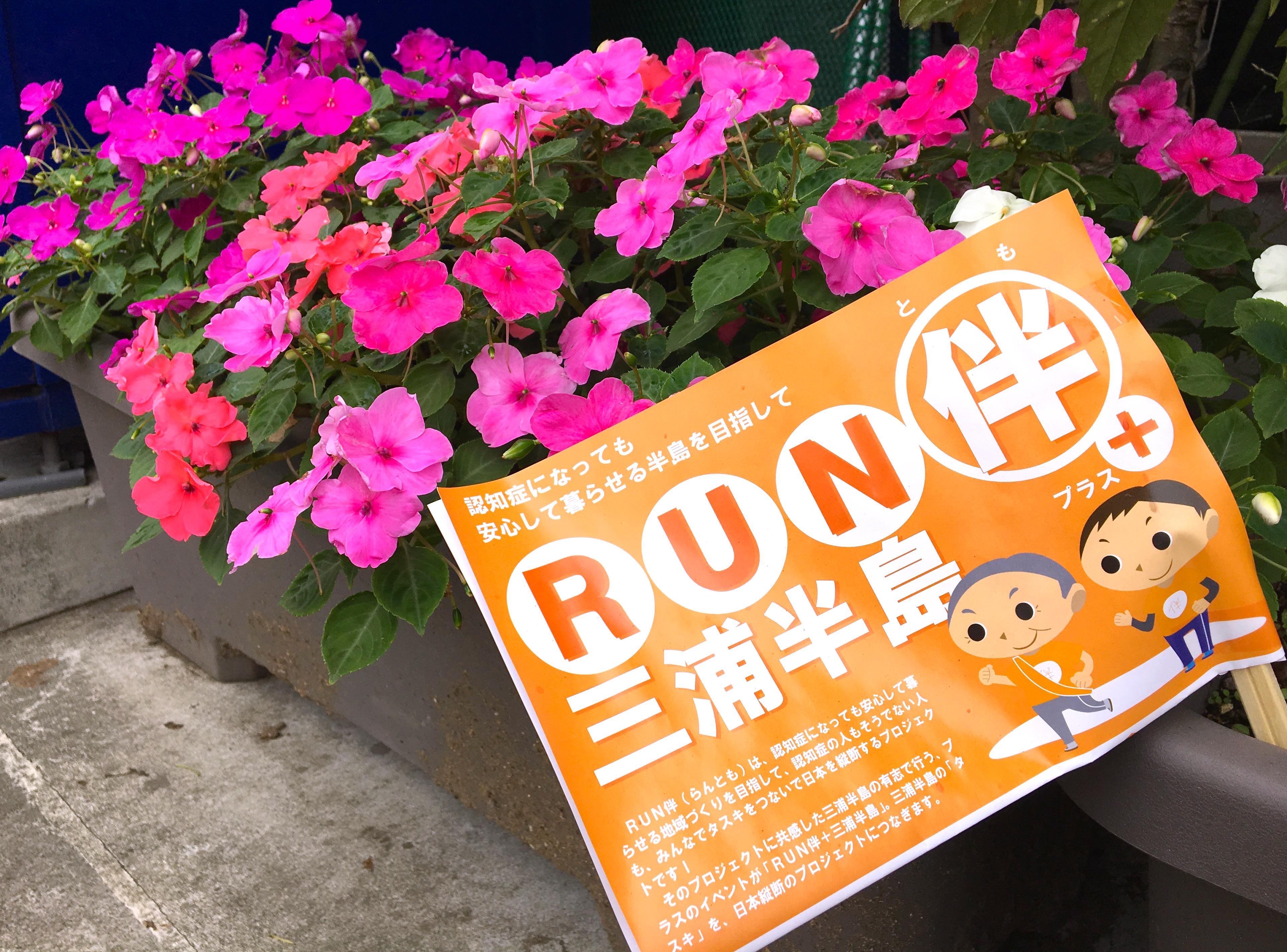 RUN伴+三浦半島でオレンジロード