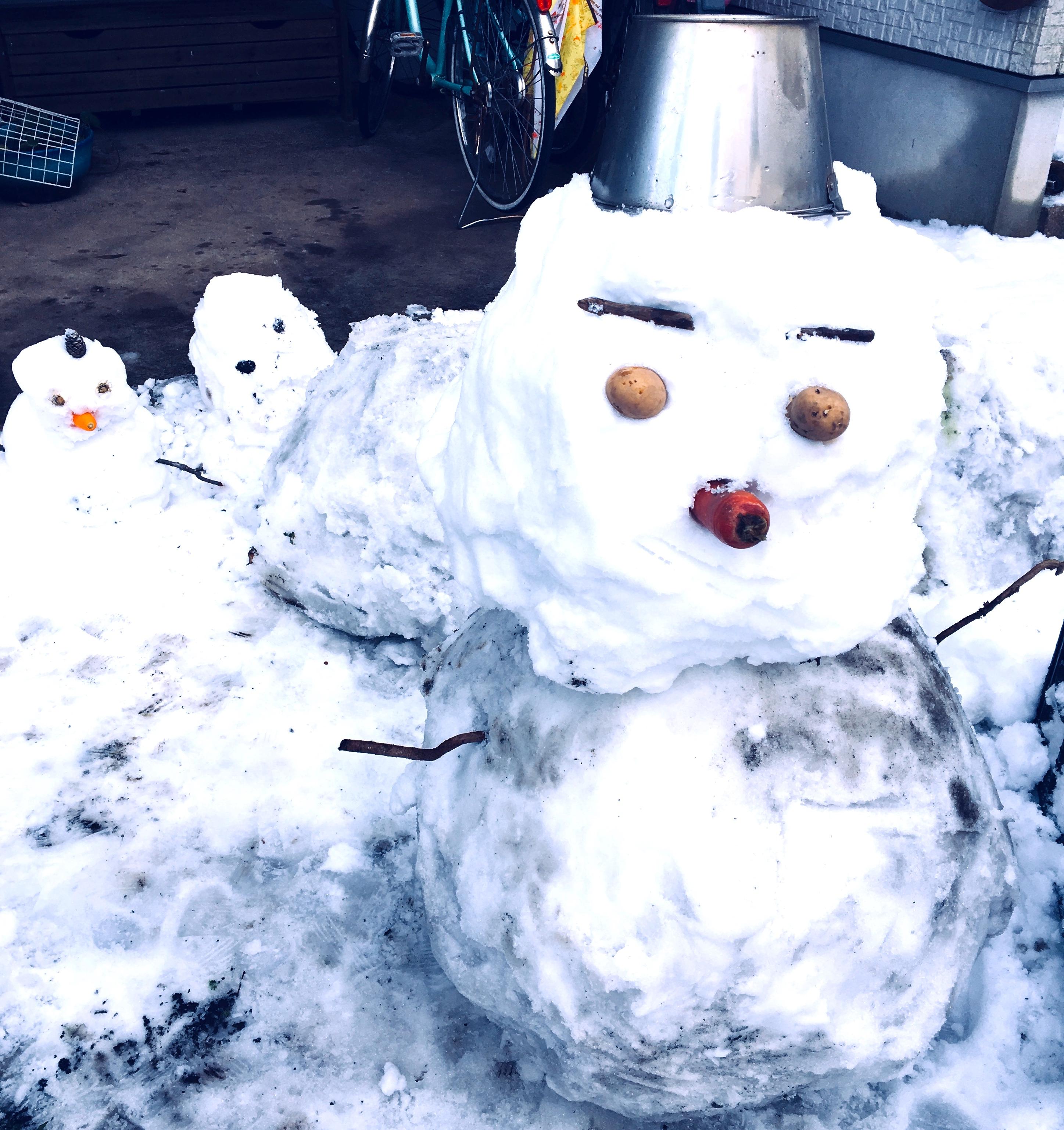 逗子でも久しぶりの積雪に。雪かきは腰痛にようつぅい!