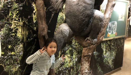 名古屋に帰省して東山動物園へ。昭和は遠くなりにけり。