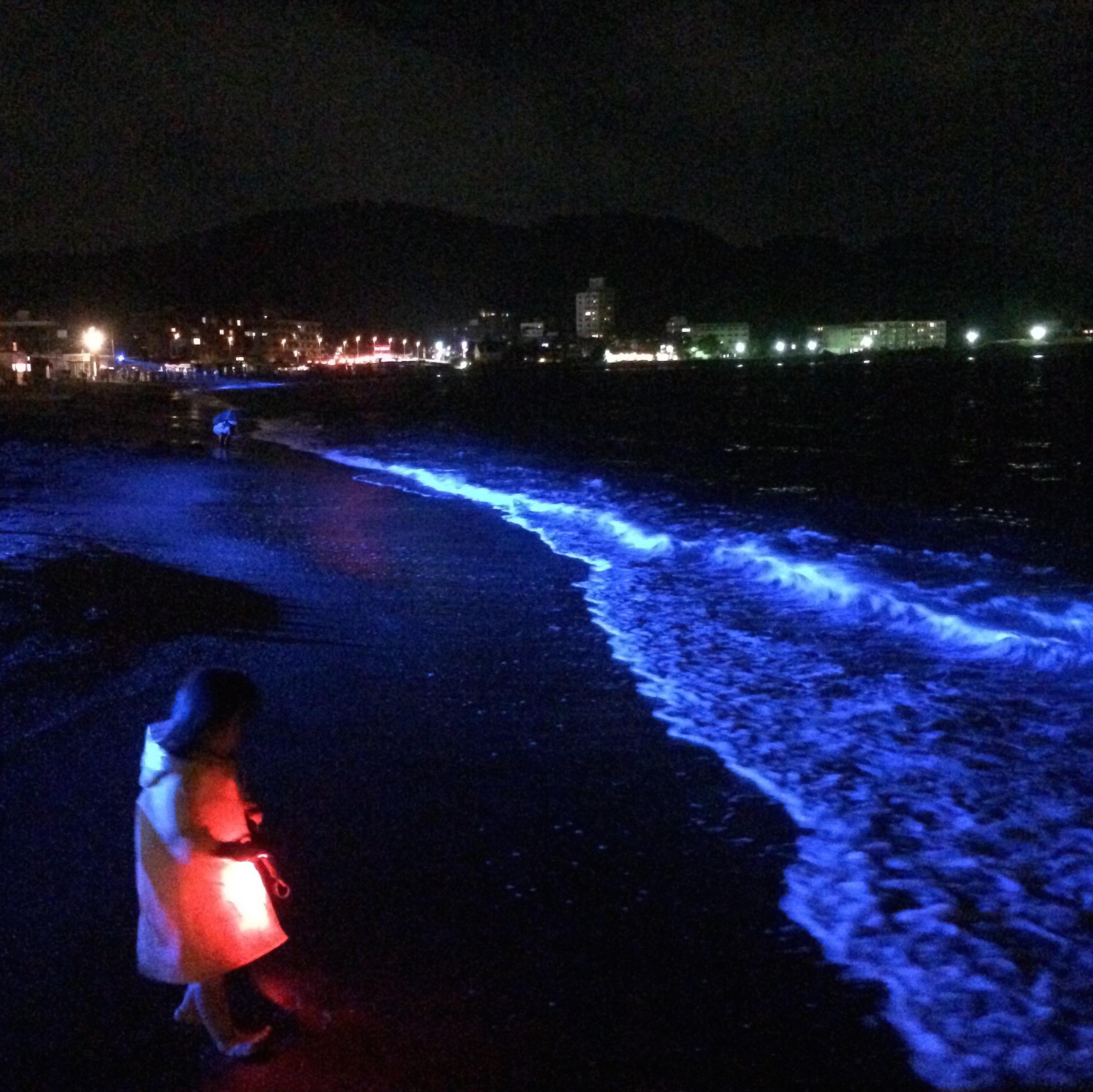 'NIGHT WAVE' でファンタスティックな逗子海岸