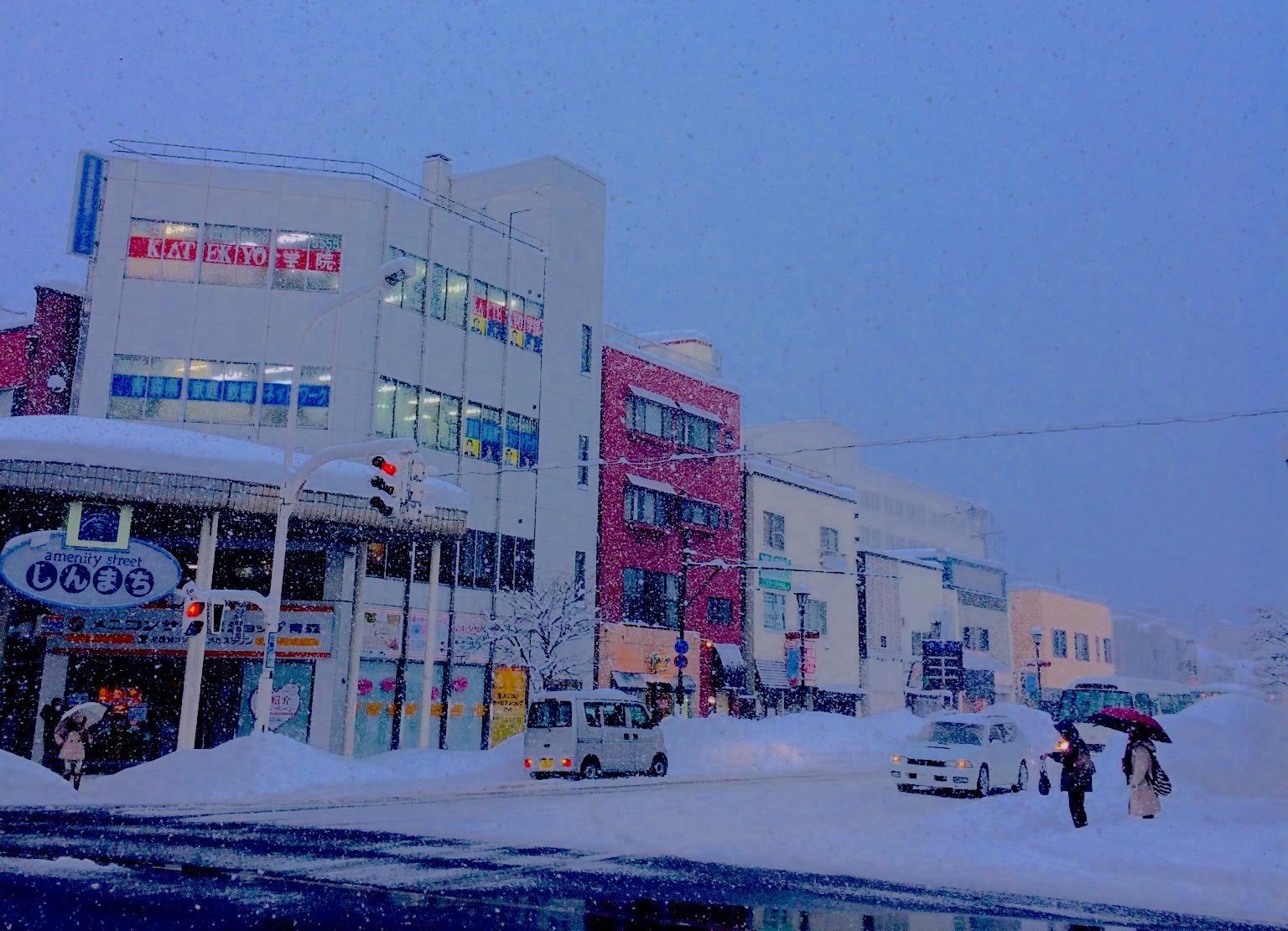 青森は大雪でした〜菊地可奈子さんのブログを研修の素材に