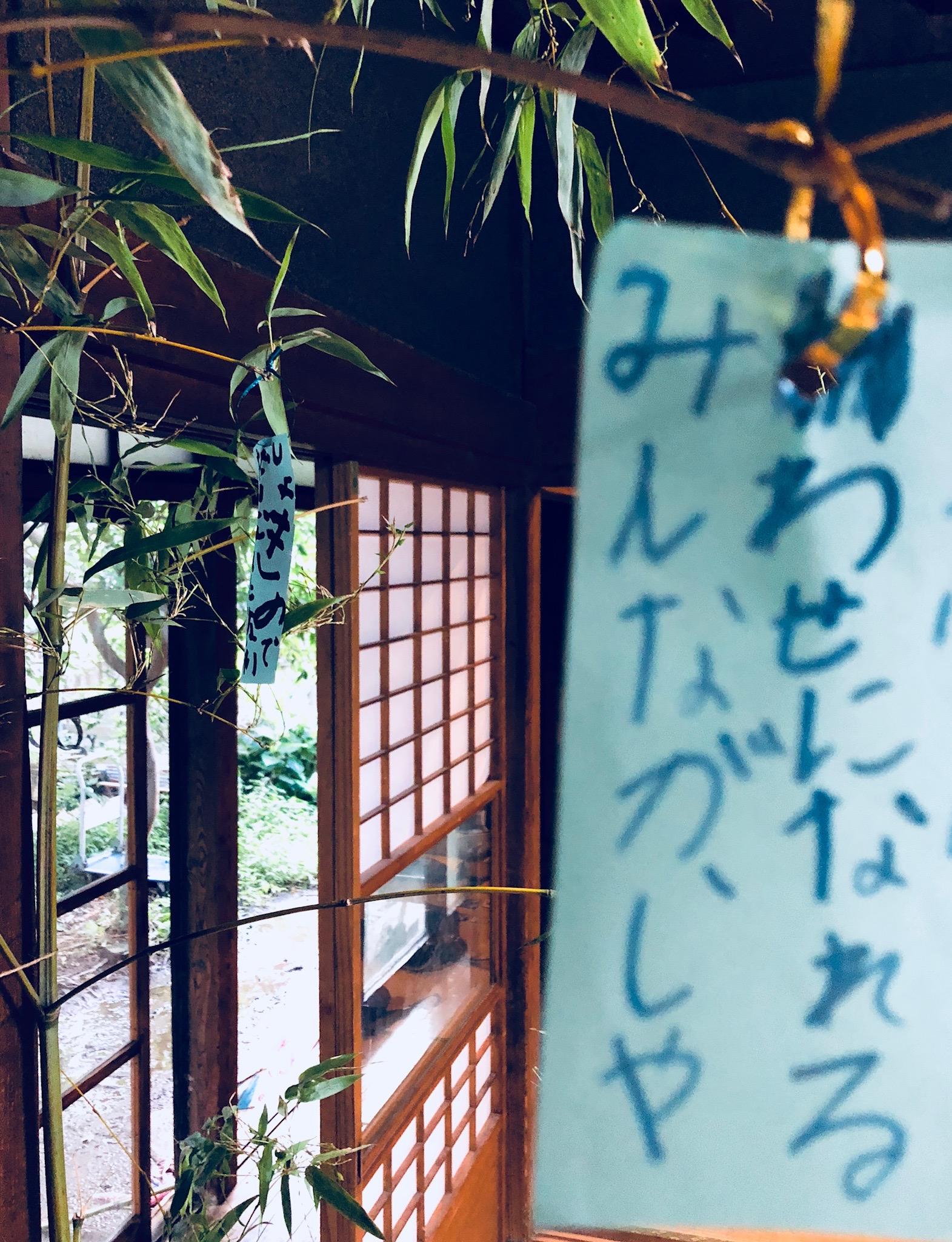 七夕の竹を取りに。みんながしあわせになれますよう。