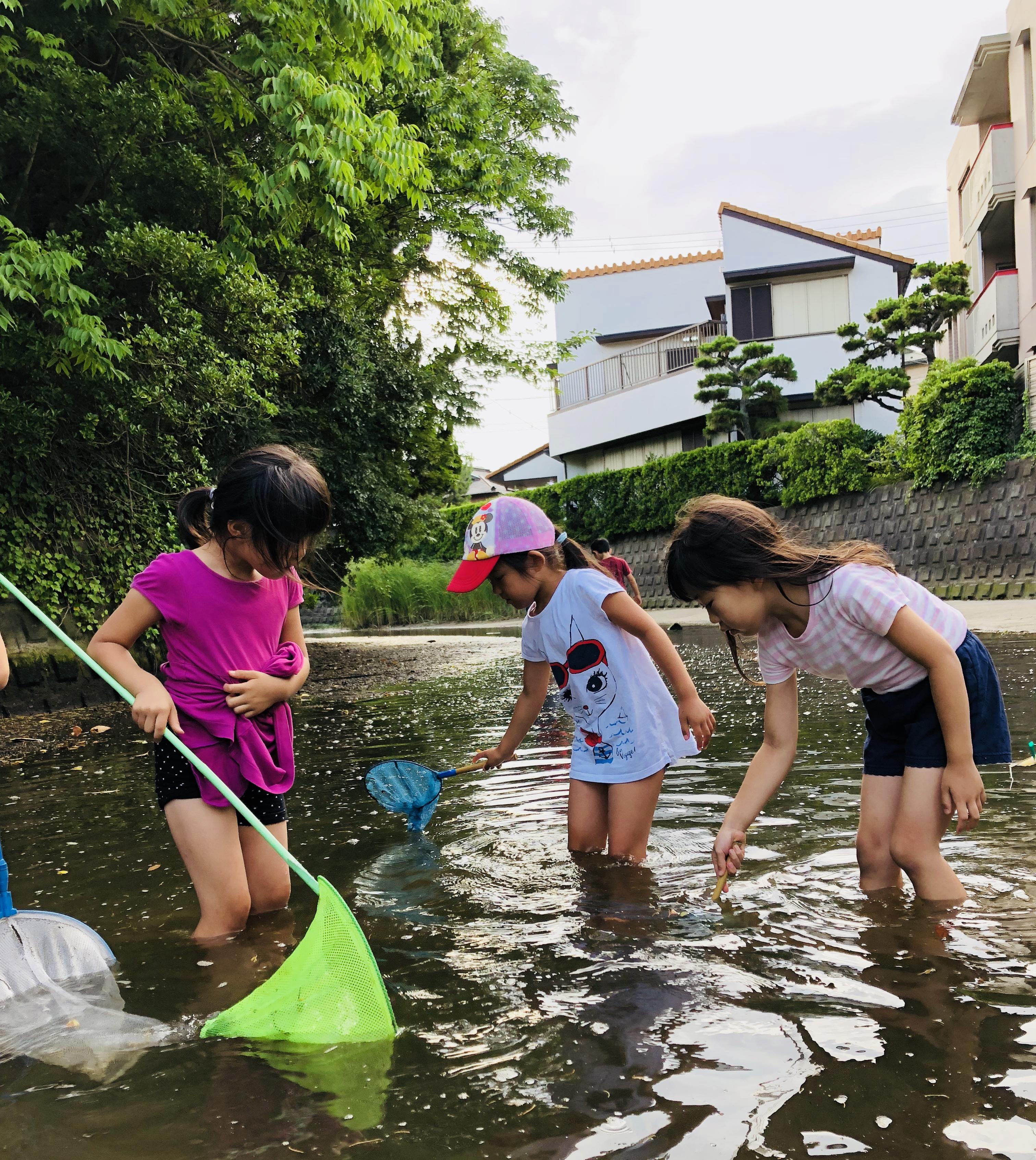 川へ魚を取りにいった夏の日〜夏休みプロジェクトのスタッフ募集!